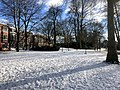 1079.Noorderplantsoen.Park.Ijs.Winter.Schaatsen.Sneeuw.Groningen.jpg