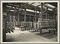 1108WP-4 - Abattoirs et marché aux bestiaux de la Mouche - Tony Garnier 2.jpg
