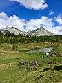11 alpe Devero, il Grande Est.jpg