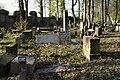 1393viki Cmentarz żydowski przy ul. Lotniczej. Foto Barbara Maliszewska.jpg