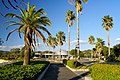 141115 Hyogo prefectural Ako Seaside Park Japan10n.jpg
