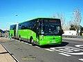 146 Colmenarejo - Flickr - antoniovera1.jpg