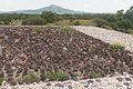 15-07-20-Teotihuacan-by-RalfR-N3S 9438.jpg