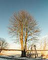 16-01-18-Joachimsthal-RalfR-N3S 3683-3689.jpg