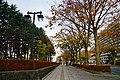 171103 Chuo-dori Morioka Iwate pref Japan02n.jpg