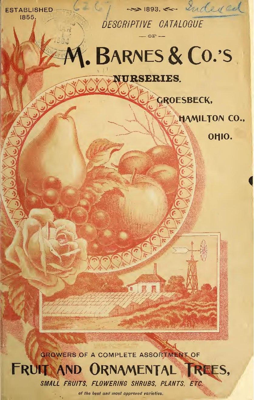 File:1893 descriptive catalogue of M. Barnes & Co.'s ...