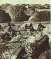 1953-01 1953年北大荒玉米农场.png