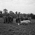 1958 visite d'une délégation INRA au Haras du Pin Cliché Jean Joseph Weber-29.jpg