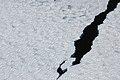 2007 Snow-Hill-Island Luyten-De-Hauwere-Sea-Ice-16.jpg
