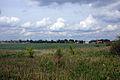 2009-05-20-barnim-by-RalfR-10.jpg