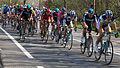 2012 Ronde van Vlaanderen, Wallpaper (7131698389).jpg