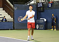 2014 US Open (Tennis) - Qualifying Rounds - Andreas Beck (15034959856).jpg