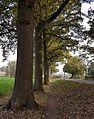 2016 Voerendaal, Retersbekerweg bij kasteel Rivieren 04.jpg