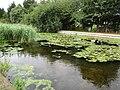 2018-08-12 Gimingham Corn mill pond, Mill street, Gimingham.JPG