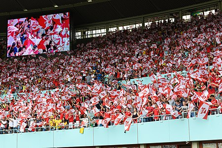 20180610 FIFA Friendly Match Austria vs. Brazil Fans waving Stiegl flags 850 0003.jpg