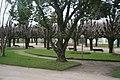 20200204 CoimbraSub 5868 (49656934178).jpg