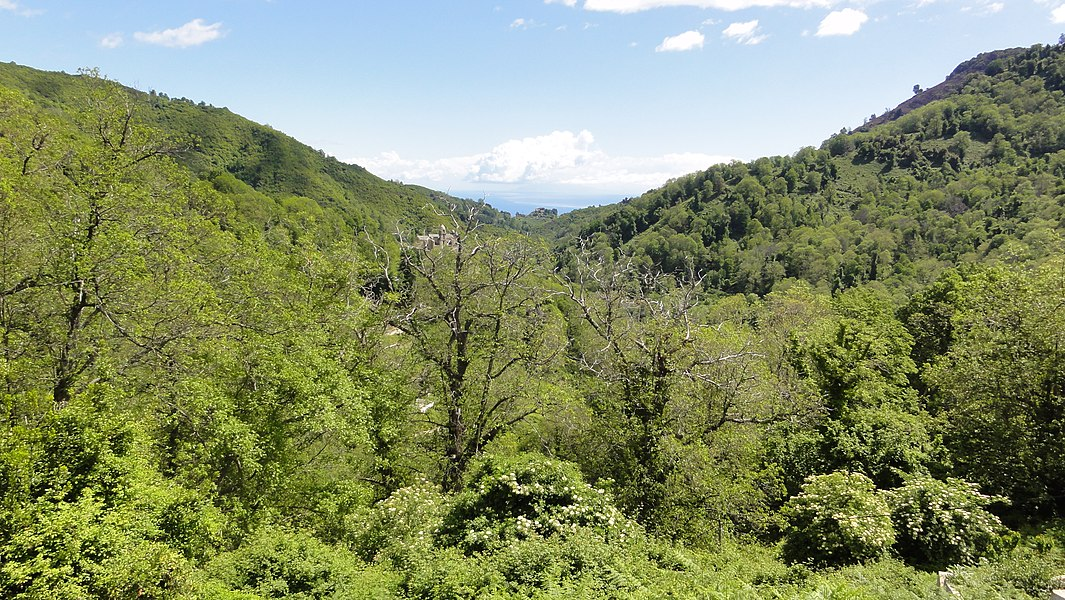 20230 Santa-Reparata-di-Moriani, France