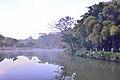308, Taiwan, 新竹縣寶山鄉油田村 - panoramio (12).jpg