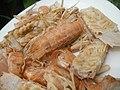 4087Ants Common houseflies foods delicacies of Bulacan 08.jpg