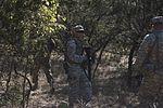 40th CAB Soldiers train to survive 151018-Z-JM073-018.jpg