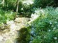 577 Rivière de Pont-l'Abbé en amont de l'étang du Moulin Neuf.JPG