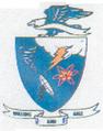 6 Weather Sq emblem (1956).png