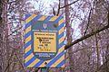 71-249-5013 Dakhnivka Pine Oak DSC 5766.jpg