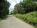 9759Poblacion III Del Carmen, Alaminos, Road 09.jpg