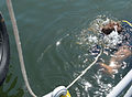 ATFP Dive 130930-N-PX130-043.jpg