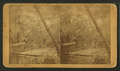A Fine view of the Oklawaha River at Palmetto Landing, from Robert N. Dennis collection of stereoscopic views 2.png