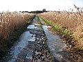 A frozen path - geograph.org.uk - 1110308.jpg