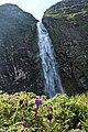 A gigante Casca D'antas.jpg
