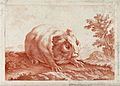 A guinea pig in its natural environment. Engraving by Le Cle Wellcome V0021582.jpg