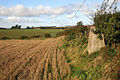 A trig point by a field edge - geograph.org.uk - 1022917.jpg
