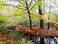 Acadia National Park (8111154885).jpg
