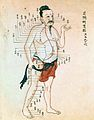 Acupuncture chart with a series of points indicated on the Wellcome L0012239.jpg