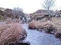 Afon Cadnant - geograph.org.uk - 340681.jpg