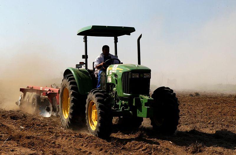 File:Agriculture of Mâncio Lima, Brazil.jpg