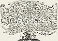 Albero genealogico marsciano ughelli.jpg