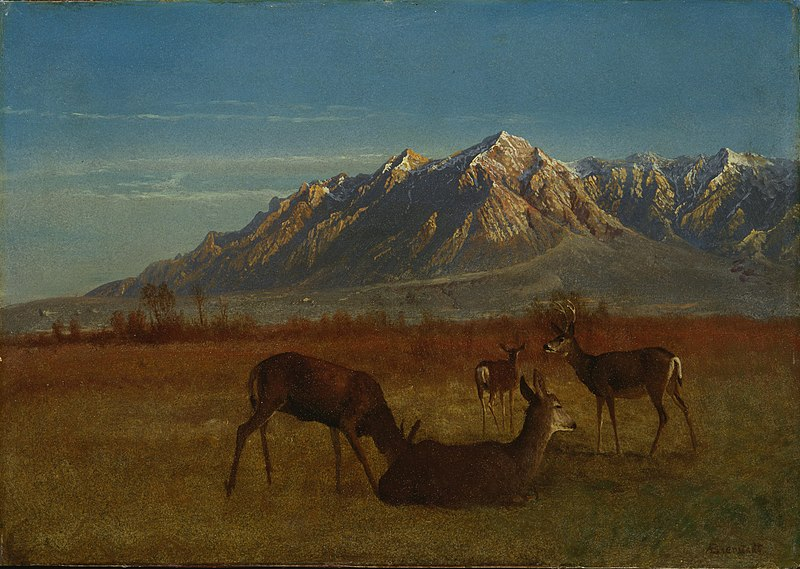 File:Albert Bierstadt - Deer in Mountain Home.jpg
