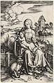 Albrecht Dürer - The Virgin and Child with the Monkey (NGA 1949.1.20).jpg