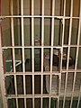 Alcatraz Cells 3.JPG