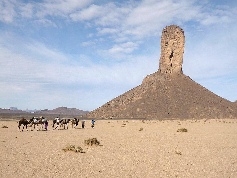 Algérie 2009