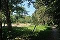 Allée bois de Boulogne 11.jpg