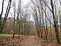 Alleenbäume - panoramio.jpg