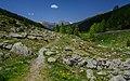 Alps of Switzerland DSC 2273-25 (14592352597).jpg