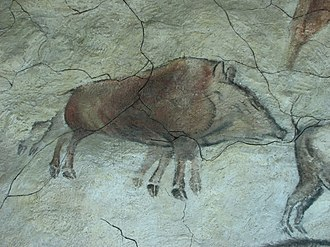 Aberrant decoding - A living trotting boar, or a dead boar lying on its side? Cave painting from Altamira.
