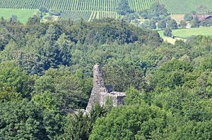 Alt-Regensberg Castle - the moraine hill of the ruined castle