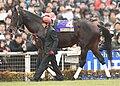 Ampersand(horse) 20071229P1.jpg