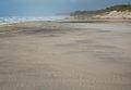 An Atlantic beach in Portugal.jpg